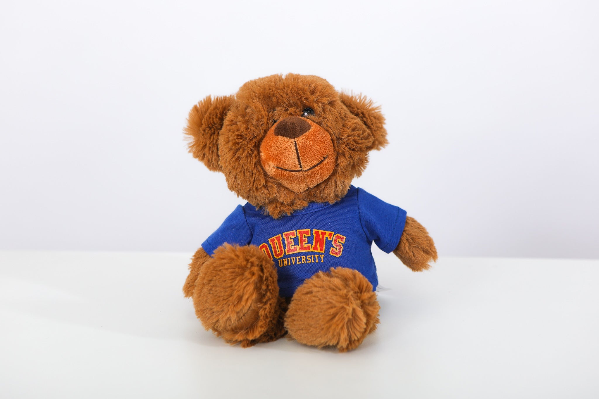 Teddy bear wearing a blue queens tshirt
