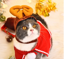 Load image into Gallery viewer, Cat Nest for Celebrating Christmas