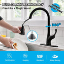 APPASO 123MB Kitchen Faucet Matte Black Single Handle with Pull Down Spray Head and Deck Plate