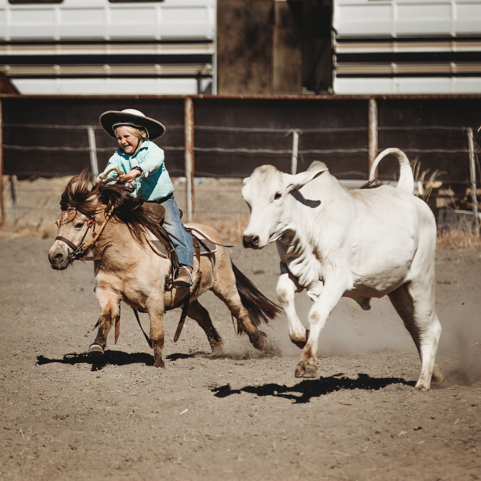 Northern Rodeo, Campdraft & Community Event Calendar