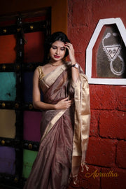 Golden Brown silk cotton saree with gold zari border and shimmery pallu