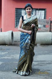 Sea Turtle Green Silk Cotton Saree