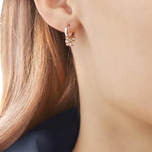 Load image into Gallery viewer, Cassandra Dangling Crystal Huggie Earring - tissinyc