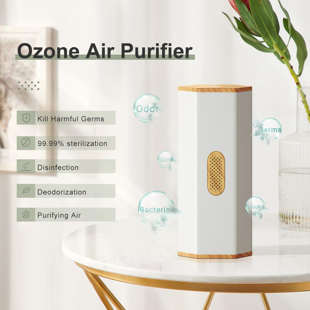 Ionizer Air Purifier Ozone