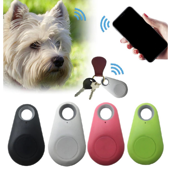 Smart GPS Tracking Keyring