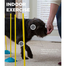 Load image into Gallery viewer, Zip & Zoom Indoor - Agility Kit
