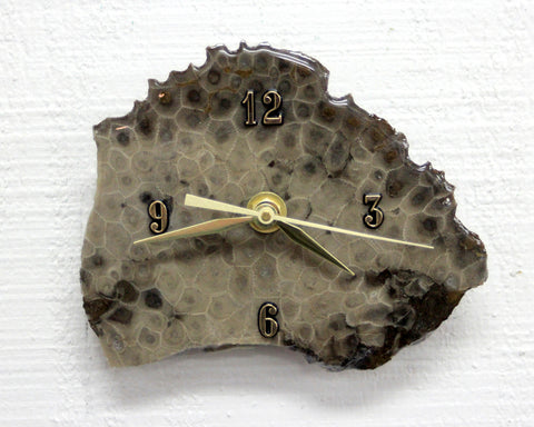 Petoskey Stone Desk Clock