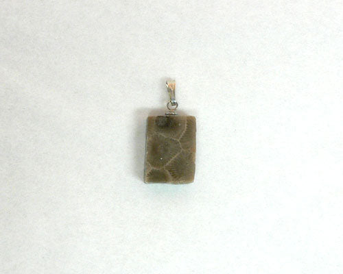 Petoskey Stone Rectangle Charm