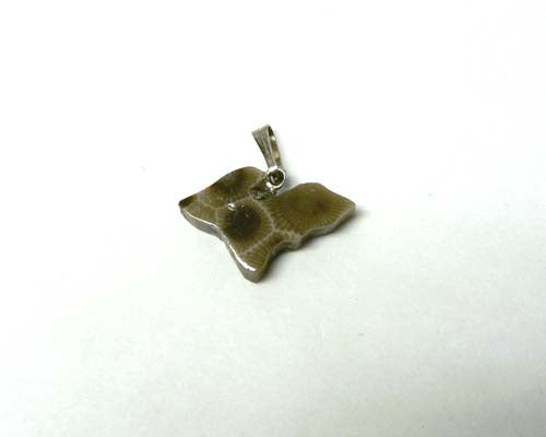 Petoskey Stone Upper Michigan Charm