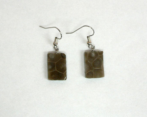 Petoskey Stone Rectangle Earrings