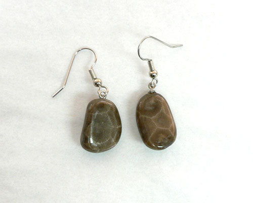 Petoskey Stone Freeform Earrings
