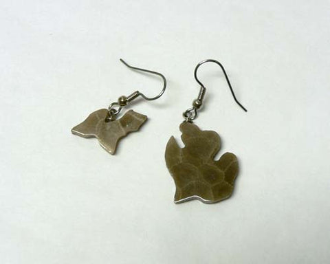 Petoskey Stone Michigan Earrings