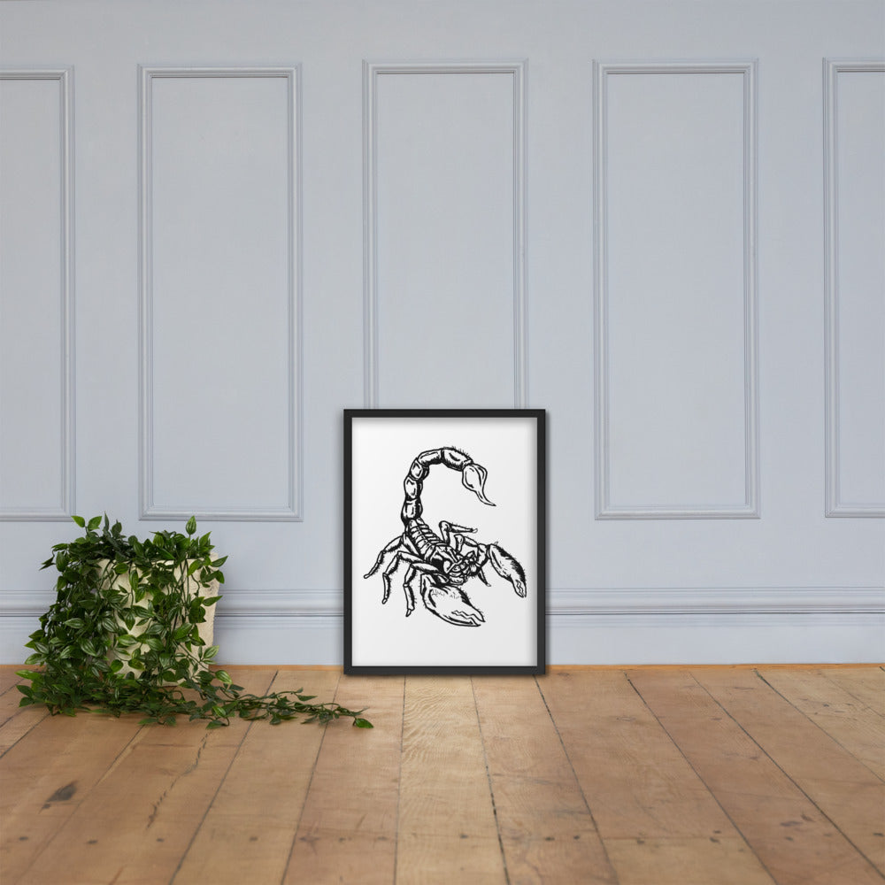 Scorpion Framed poster