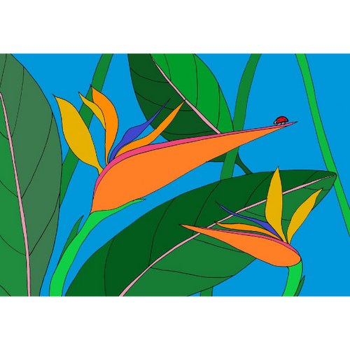 Birds of Paradise Rect Large Card