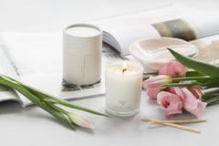 Mini Dream soy candles tube