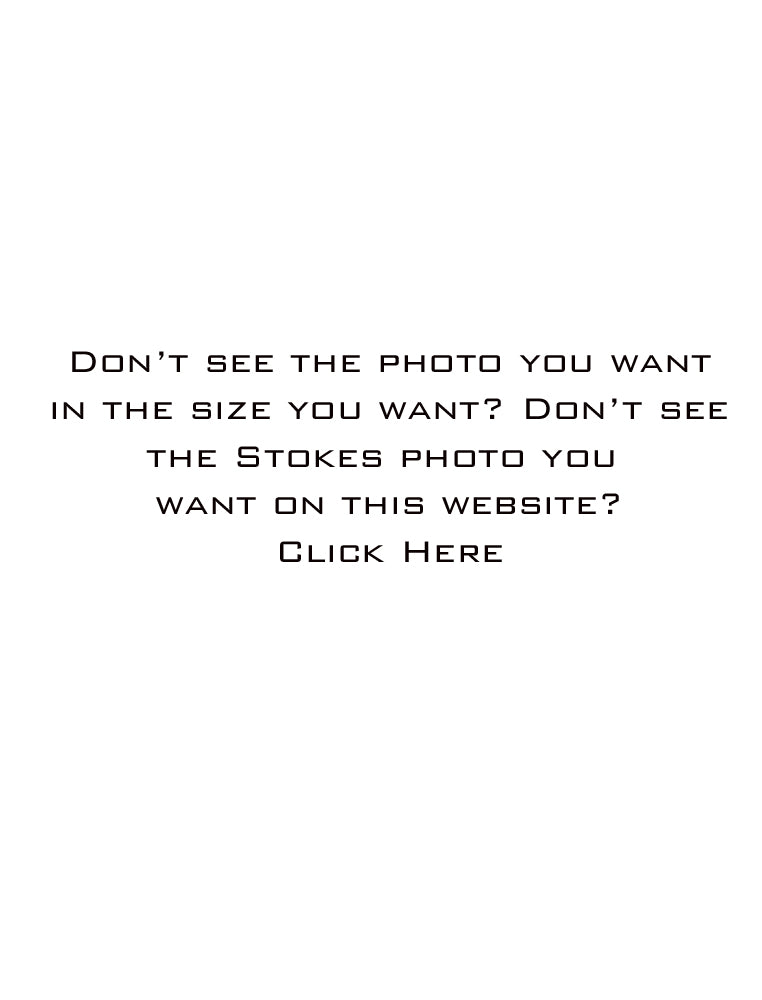 Don't see the photo you want or in the size you want?