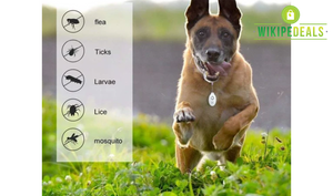 Ultrasonic Flea & Tick Repellent