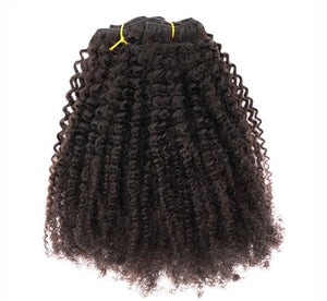 Afro Kinky Coily Clip In Extensions