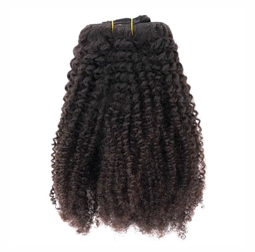Afro Kinky Curly Clip In Extensions