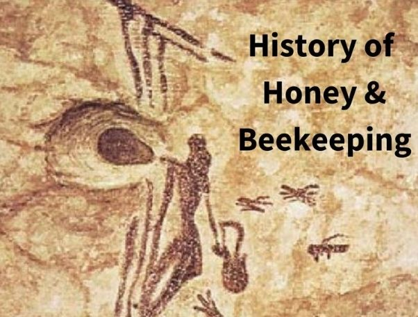 History of Honey & Beekeeping!