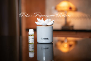 Diffuser | Ceramic Lotus Flower | Relaxing Scents