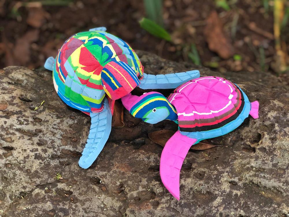 Small and Medium Turtle Collection (Set of 2)