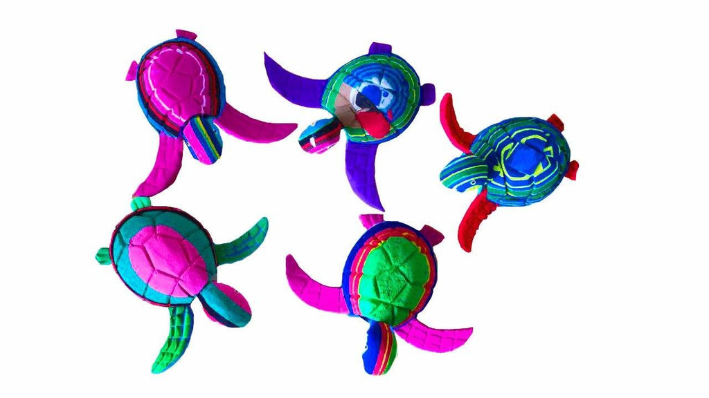 Small Turtle Collection (Set of 5)