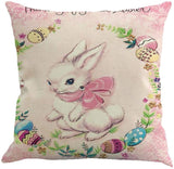 Easter Rabbit with Egg Home Decor Pillow Covers,Easter Pillowcases Illustration Throw Pillow Case Cushion Covers 18x18