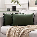 MIULEE Pack of 2 Velvet Soft Solid Decorative Throw Pillow Cover with Tassels Fringe Boho Accent Cushion Case for Couch Sofa Bed 12 x 20 Inch Aqua Green