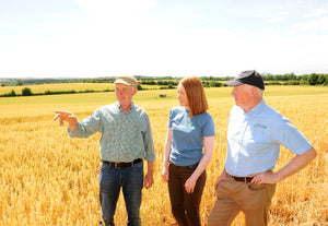 Three people standing in a wheat field on a farm tour in Ireland
