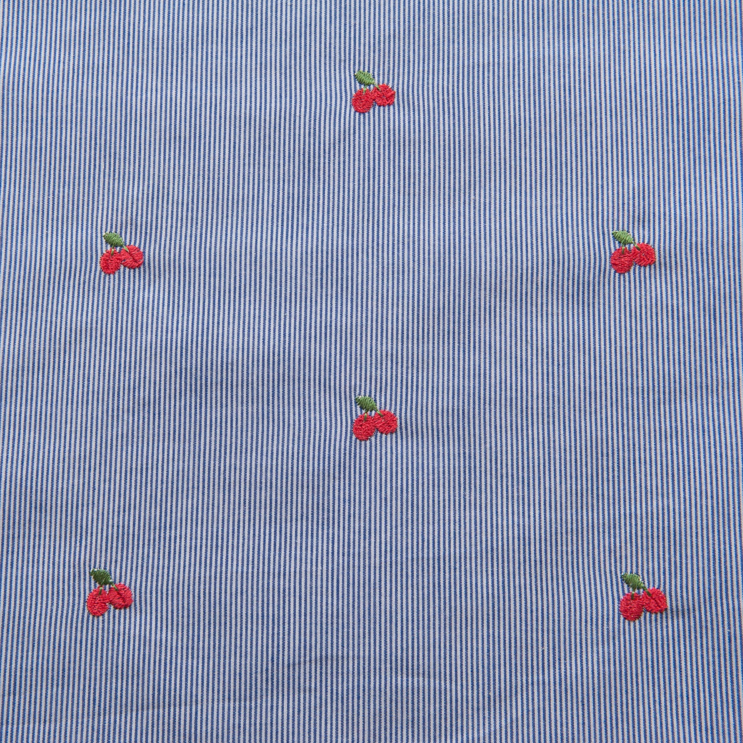 Blue and White Striped Cotton With Embroidered Cherries