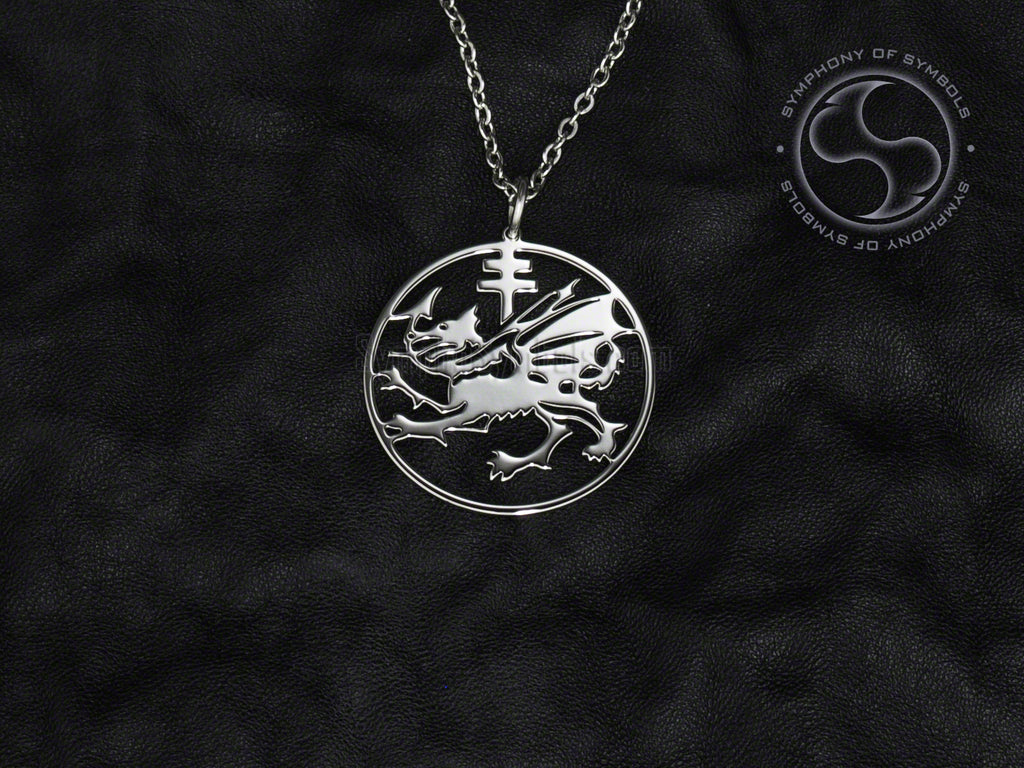 Stainless Steel Necklace with Order of the Dragon Symbol