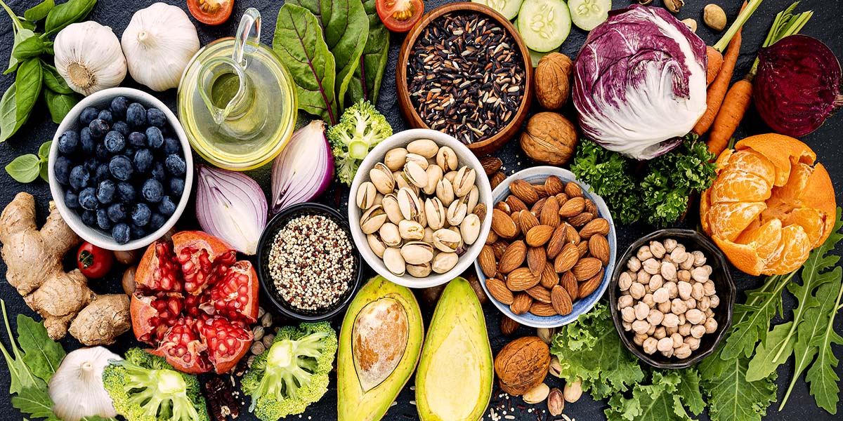An Introduction to Plant-Based Protein