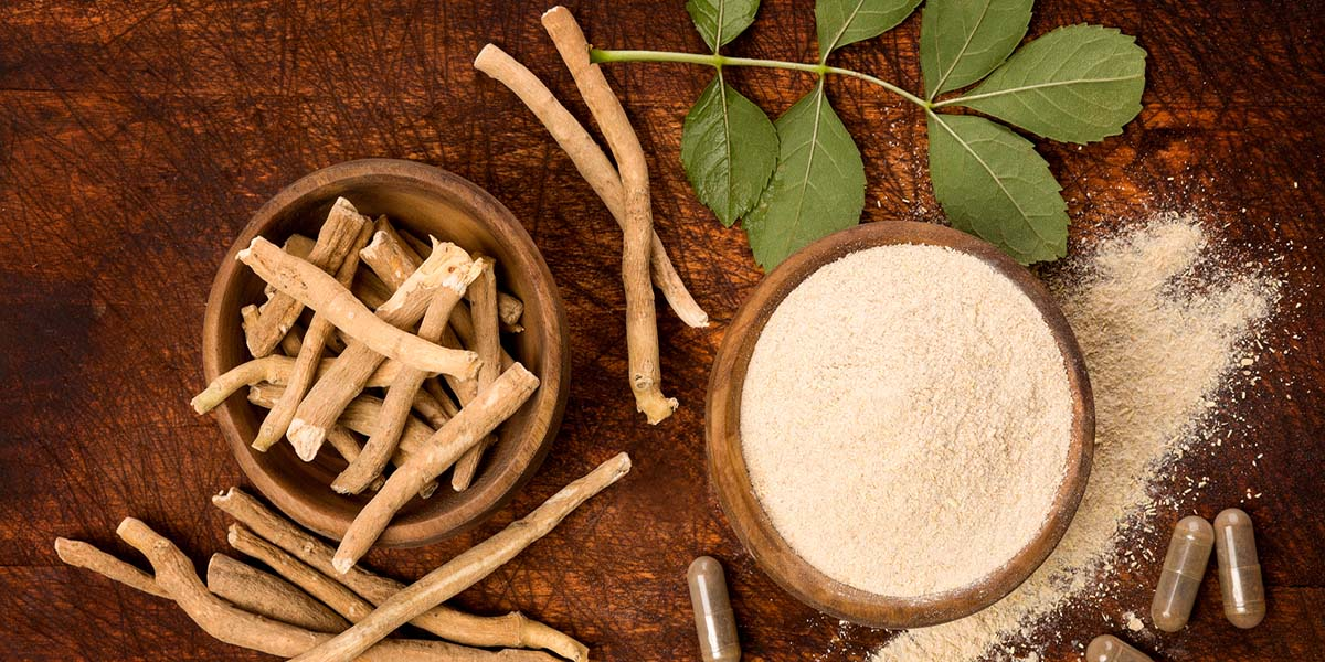 Select Source Spotlight – Ashwagandha, Ancient Herb – Modern Benefits
