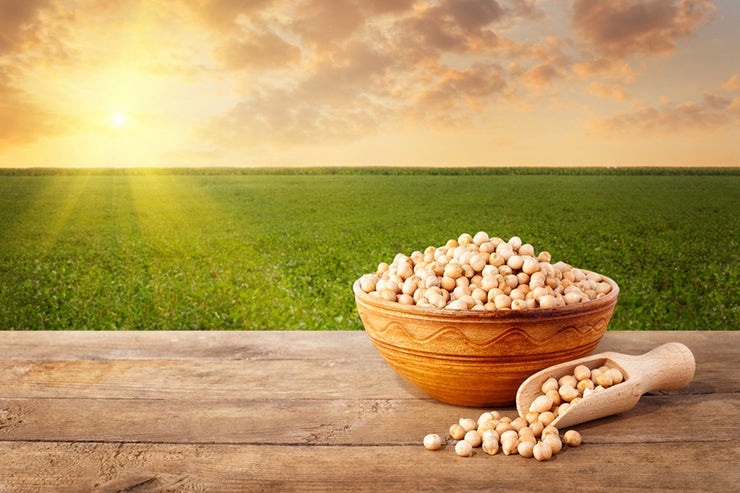 Bowl of healthy chickpeas sitting on a wooden table in front of a green field