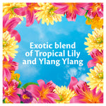 Thumbnail 6: Surf Tropical Lily & Ylang-Ylang Biological Washing Powder 5.2kg