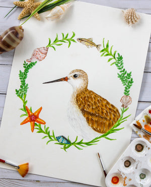 Sandpiper Watercolor Print
