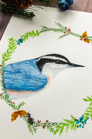 Nuthatch Watercolor Print