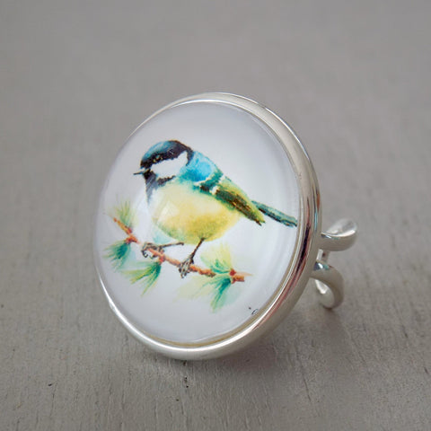 25mm blue tit fully adjustable ring