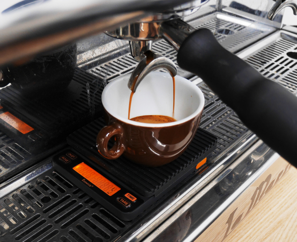 Home Enthusiast Barista Online