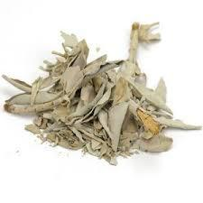 SAGE LEAF WHITE whole - Cheryls Herbs