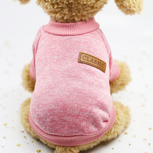 Load image into Gallery viewer, Dog Clothes For Small dog jersey cat Sweater Clothing For Pet cats Chihuahua warm dogs jersey autumn and winter sweater to keep