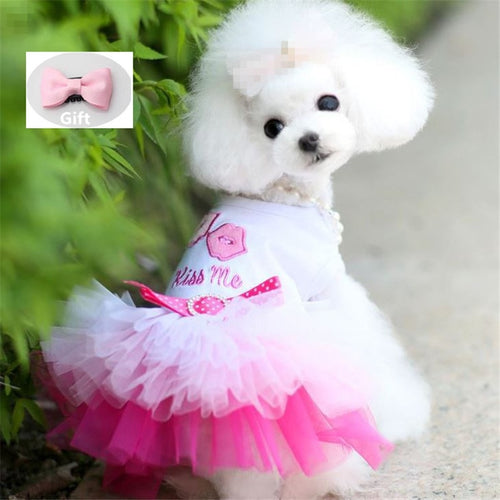 Dog Clothes for Small Dogs Dress Sweety Princess Dress Spring Summer Puppy Small Dog Lace Princess Chihuahua Dog Mascotas Roupa