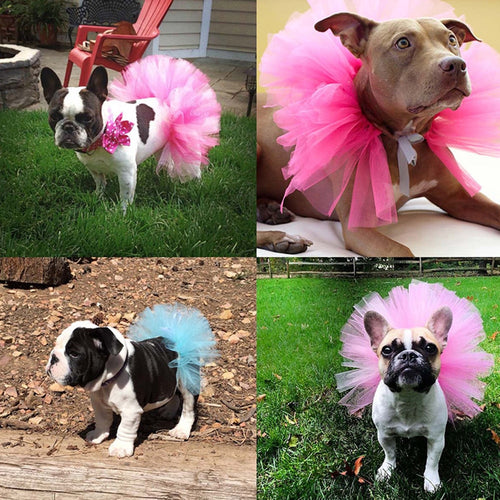 Hot NEW Summer Dog Tutu Skirt Princess Pet Cat Dress Soft Tulle Cosplay Bulldog Dress for Small Pet 5 Color DROPSHIPPING