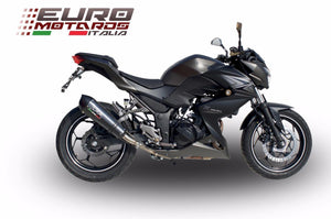 Kawasaki Z300 2014-2016 GPR Exhaust GPE CF Carbon Look Silencer Racing