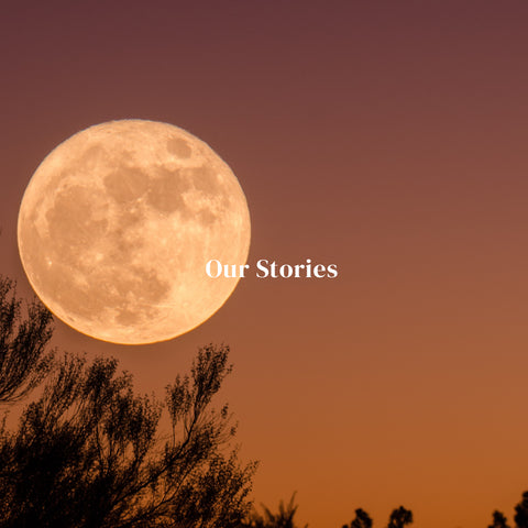 Our Stories 10 & Co About Us