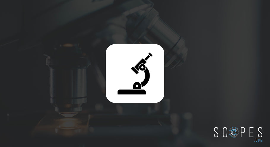 9 Essential Tips for Choosing a Microscope