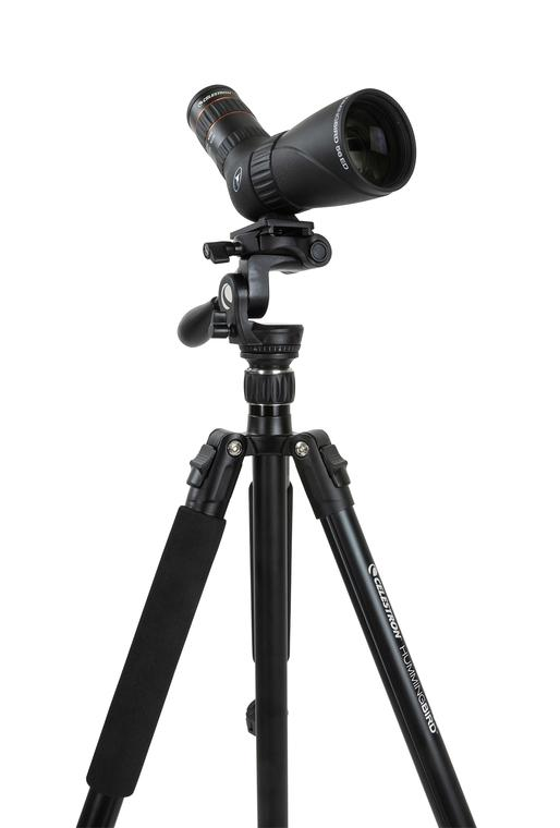 Celestron Tripod, Hummingbird - the-scopes