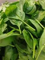 Spinach, baby leaf, 100g bag