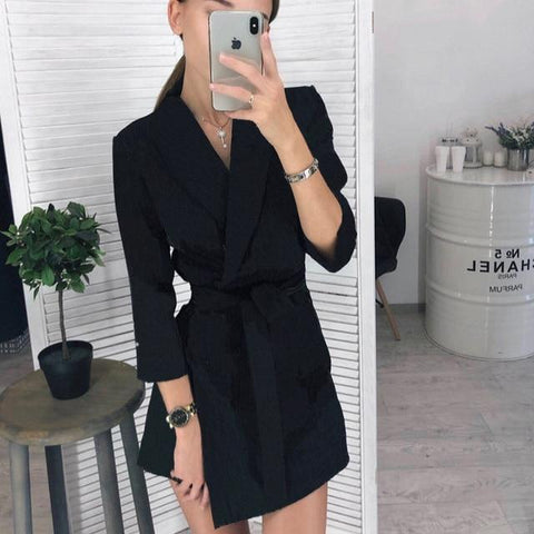 Vintage Sashes A-line Long Sleeve Notched Collar Solid Casual Elegant Dress